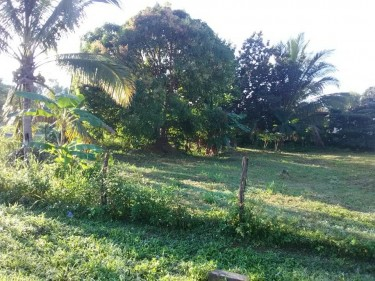 3 Bedroom House For Sale Plus 1 Empty Lot Number