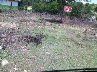 RESIDENTIAL LOT FOR SALE IN TREADLIGHT, CLARENDON, JAMAICA