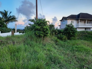 RESIDENTIAL LOT FOR SALE IN 6 WALTHAM MANDEVILLE, MANCHESTER, JAMAICA