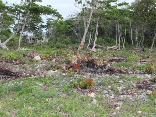RESORT/VACATION PROPERTY FOR SALE IN GALINA, ST. MARY, JAMAICA