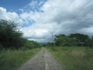COMMERCIAL/FARM LAND FOR SALE IN OSBOURNE STORE, CLARENDON, JAMAICA