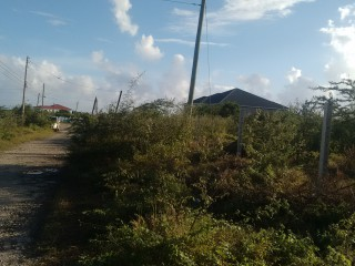 RESIDENTIAL LOT FOR SALE IN SOUTHHAVEN, ST. THOMAS, JAMAICA RE-LISTED