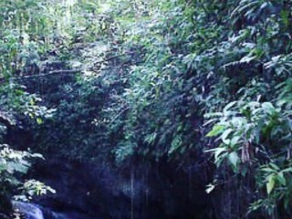 RESIDENTIAL LOT FOR SALE IN HECTORS RIVER ESTATE, PORTLAND, JAMAICA