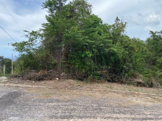 RESIDENTIAL LOT FOR SALE IN DUNCANS, TRELAWNY, JAMAICA