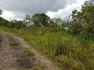 RESIDENTIAL LOT FOR SALE IN KINGSLAND, MANCHESTER, JAMAICA