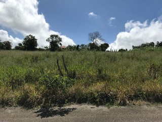 RESIDENTIAL LOT FOR SALE IN NEWARK, MANCHESTER, JAMAICA