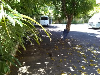 12 BED 14 BATH RESORT/VACATION PROPERTY FOR SALE IN WALTHAM, KINGSTON / ST. ANDREW, JAMAICA
