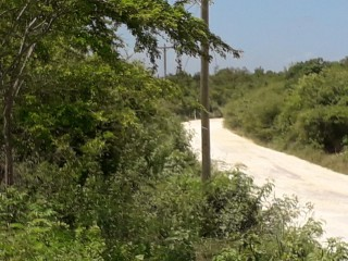 RESIDENTIAL LOT FOR SALE IN PLEASANT VALLEY, CLARENDON, JAMAICA