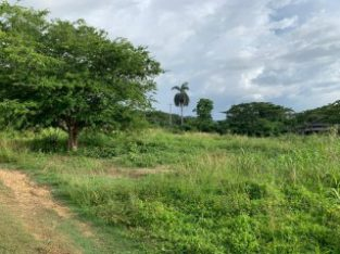 RESORT/VACATION PROPERTY FOR SALE IN GREEN ISLAND, HANOVER, JAMAICA