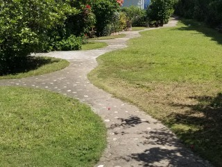 2 BED 2 BATH APARTMENT FOR RENT IN RUTHVEN ROAD, KINGSTON / ST. ANDREW, JAMAICA