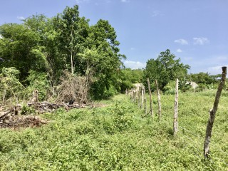 RESIDENTIAL LOT FOR SALE IN BRIGHTON, ST. ELIZABETH, JAMAICA