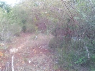 RESIDENTIAL LOT FOR SALE IN COCOA WALK, ST. CATHERINE, JAMAICA