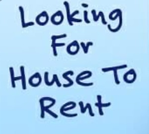 House Needed For Rent