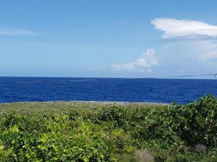 Lot For Sale- Ocean View